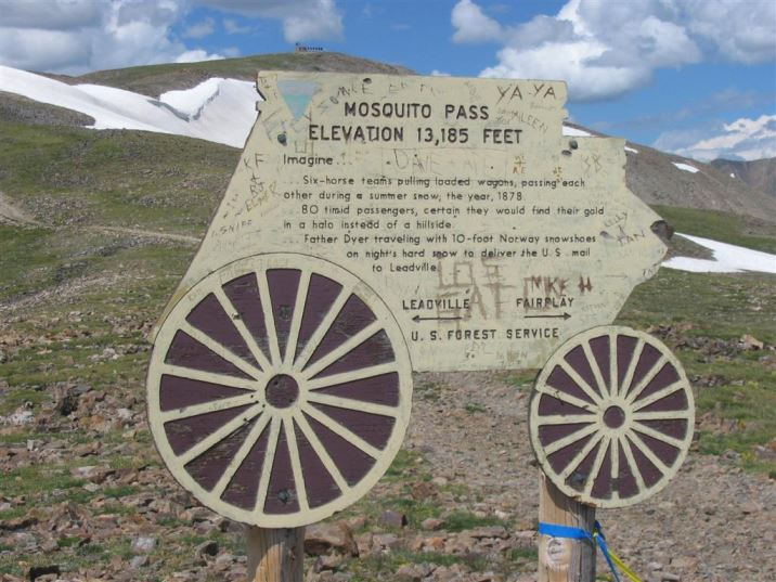 Image result for mosquito pass
