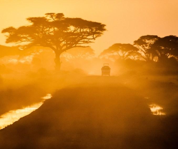 Sunset Safari Drive