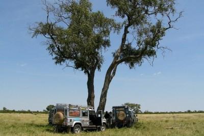family safari - Getting Around