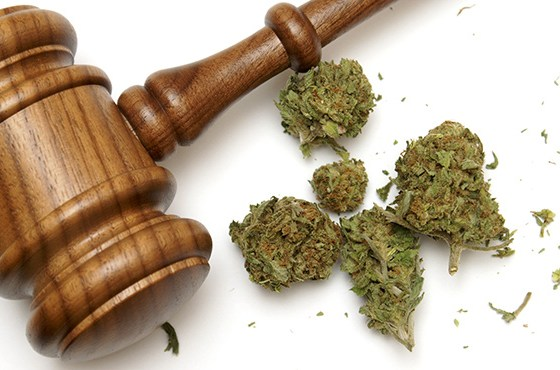 Strangest Marijuana Laws in the US