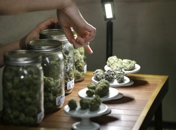 Hearing Regarding the Planning of Marijuana Business Locations