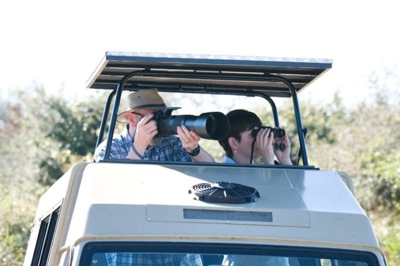 Alle Fahrzeuge von Leaflove Safari haben ein Hebeldach, welches das bequeme Beobachten der Vogel- und Tierwelt ermöglicht.