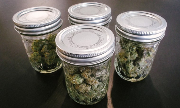 weed being stored in air tight jars