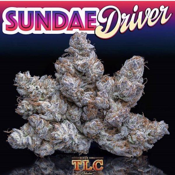 Sundae driver strain for sale