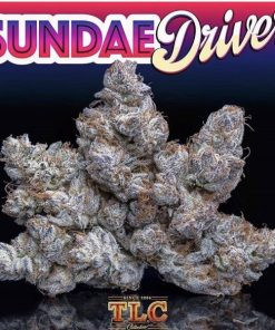 Sundae driver strain for sale