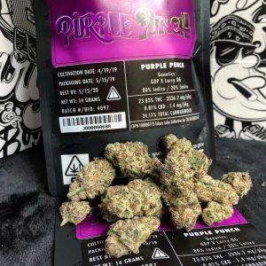 Buy purple punch Genetic strain online