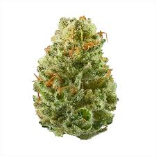 strowberry cough strain for sale