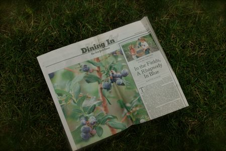 Article on blueberries