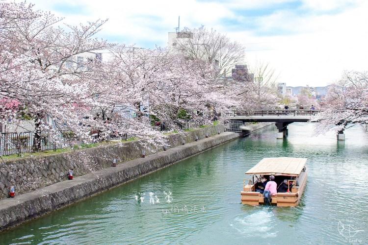 岡崎疏水 從熊野神社沿著粼粼波光散步到平安神宮 京都賞櫻景點推薦