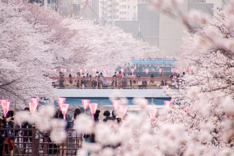 目黑川散策-沿著粉色河川漫步,從醉心黃昏至迷幻夜幕/東京賞櫻景點推薦