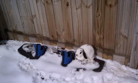 Killer snowboarding