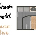 Bathroom Demo | Phase 2
