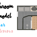 Bathroom Remodel: Décor Dilemma | Rustic or Modern?