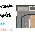 Bathroom Remodel: Décor Dilemma | Rustic or Modern?