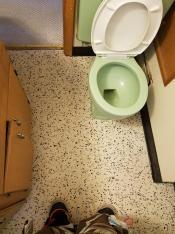 midecentury modern bathroom remodel mood board ideas DIY green toilet