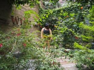 The secret garden in the hotel