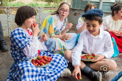 mgarr strawberry feast 2