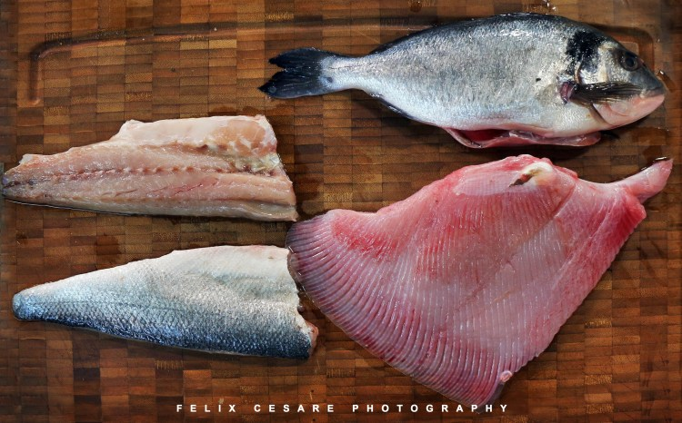 Skate, sea bream and bass