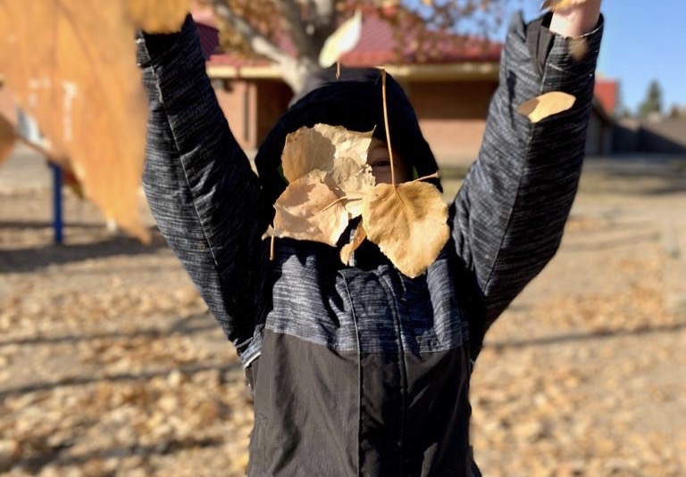Gratitude and a Thanksgiving Litany