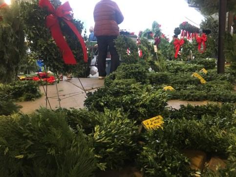 Christmas greenery on display at Ann Arbor Farmers Market