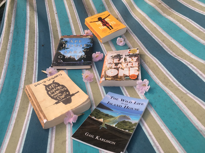 Assorted books in a striped hammock with flowers on