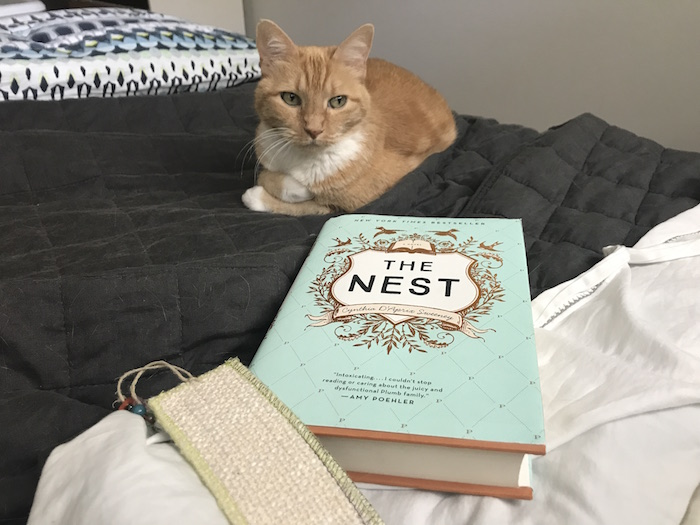 Cat and book The Nest on bed