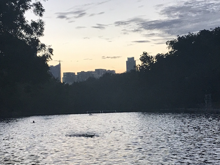 Austin skyline over Barton Springs pool in the early morning.