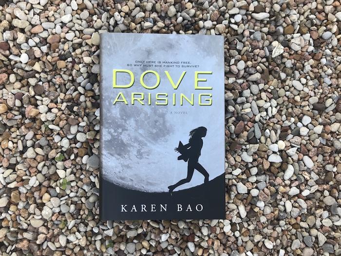 Dove Arising by Karen Bao on gravel