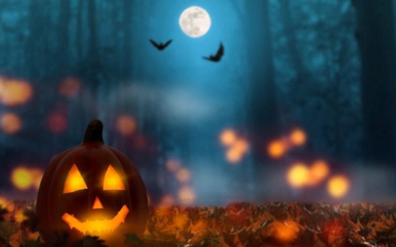 image post header october fall halloween