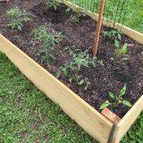 easy diy raised vegetable garden