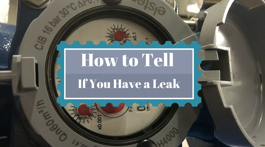Do I Have a Water Leak?