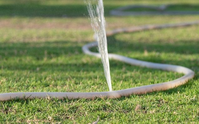 Saving Water Outside the Home