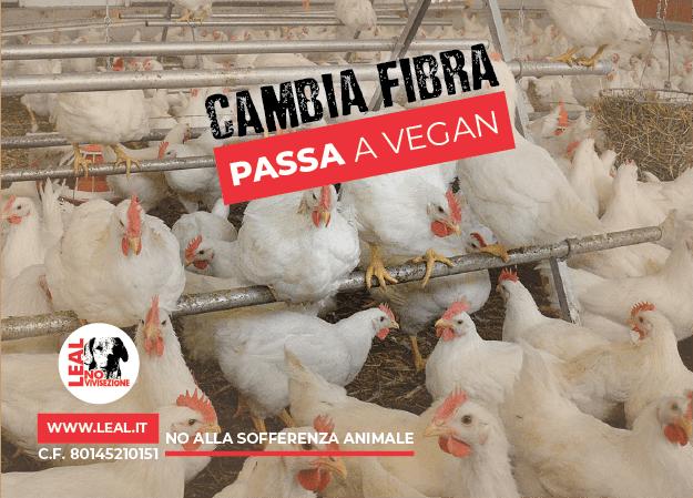 campagna cambia fibra passa a vegan
