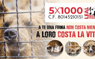 FIRMA PER DESTINARE IL TUO 5X1000 A LEAL! NOI LO GIRIAMO AGLI ANIMALI!