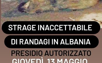 ANIMALISMO – LEAL A ROMA DAVANTI ALL'AMBASCIATA DI ALBANIA PER CHIEDERE DI FERMARE LA STRAGE DI RANDAGI