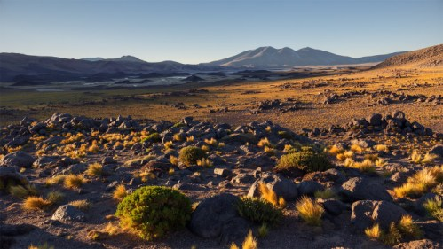 Campo de piedra volcánica