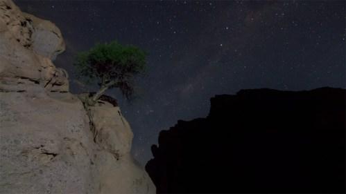 Montañas, árbol y Vía Láctea