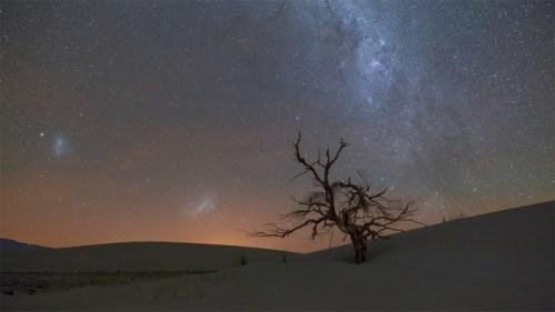Árbol, dunas y galaxias