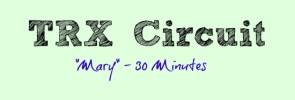 TRX circuit