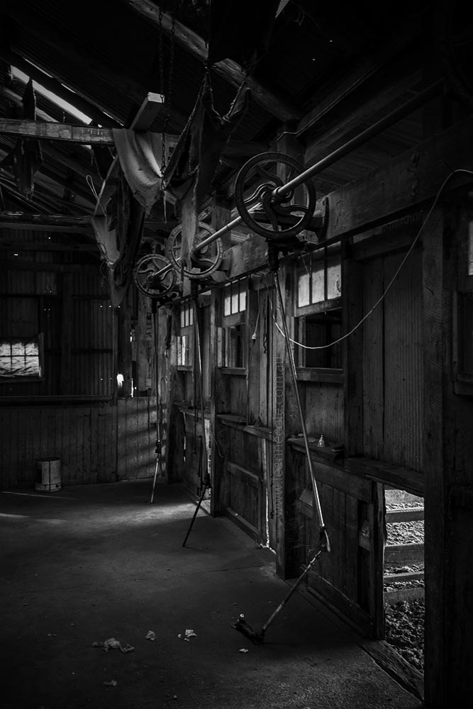 shearing-shed-old-woomelang-monochrome