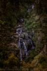 king-lake-mason-falls-bush-3