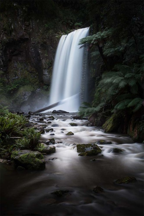 fineart-blurred-waterfall-ferns-hopetoun