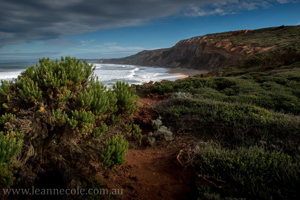 redrocks-anglesea-greatoceanroad-victoria-australia-3699