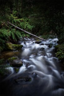 taggerty-river-flowing-rocks-marysville