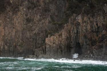 bruny-island-southcoast-cliffs-cruise-4393