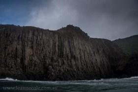 bruny-island-southcoast-cliffs-cruise-4879