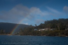 bruny-island-southcoast-cliffs-cruise-5047