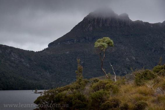 tasmania-mountains-clouds-cradle-dovelake-1913