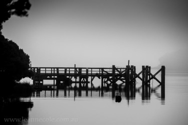 tasmania-strahan-worldheritage-gordon-river-3544