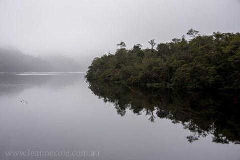 tasmania-strahan-worldheritage-gordon-river-3769